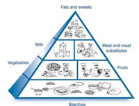 A healthy diabetic food pyramid to illustrate relative amounts of food.